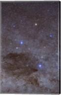 The Southern Cross and Coalsack Nebula in Crux Fine-Art Print