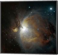 M42 nebula in Orion Fine-Art Print