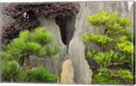 Bao's Family Garden, Huangshan, China Fine-Art Print