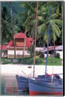 Colorful Sailboats at Harbor, Seychelles Fine-Art Print