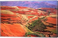 China, Yunnan, Tilled Red Laterite, Agriculture Fine-Art Print