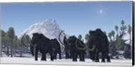 A herd of Woolly Mammoths migrate to a warmer climate in the Pleistocene Age Fine-Art Print
