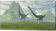 Diplodocus dinosaurs walk together in the afternoon in the prehistoric age Fine-Art Print