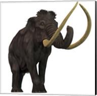 The Woolly Mammoth Fine-Art Print