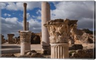 Tunisia, Carthage, Antonine Bath Ancient Architecture Fine-Art Print