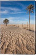 Great Dune and Palm Trees, Tunisia Fine-Art Print