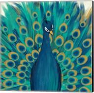 Proud as a Peacock I Fine-Art Print