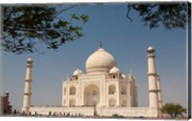 Asia, India, Taj Mahal with trees above as framing element Fine-Art Print