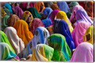 Women in colorful saris, Jhalawar, Rajasthan, India Fine-Art Print