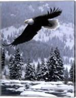 Free Flight (detail) Fine-Art Print