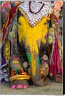 Elephant Festival, Jaipur, Rajasthan, India Fine-Art Print