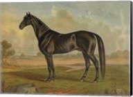 America's Renowned Stallions, c. 1876 II Fine-Art Print