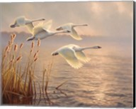 Elegant Migration Fine-Art Print