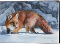 Fox at the Pines Fine-Art Print