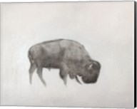 Buffalo (left) Fine-Art Print