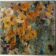 Amber Poppy Field II Fine-Art Print