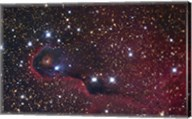 The Elephant Trunk Nebula Fine-Art Print