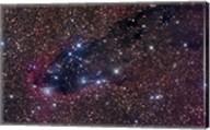 The Dark Tower, Cometary Globule in Scorpius Fine-Art Print