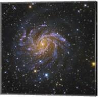 The Fireworks Galaxy Fine-Art Print