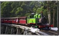 Puffing Billy Steam Train, Dandenong Ranges, near Melbourne, Victoria, Australia Fine-Art Print