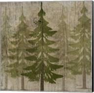 Pines Fine-Art Print