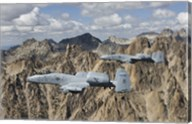 Two A-10 Thunderbolt's in Central Idaho Fine-Art Print