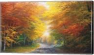 October Glow Fine-Art Print