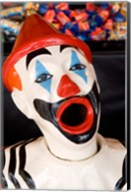 Laughing Clown, Bay of Plenty, North Island, New Zealand Fine-Art Print