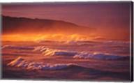 St Clair Beach, Dunedin, New Zealand Fine-Art Print