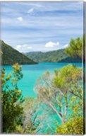 New Zealand, South Island, Marlborough, Nydia Bay Fine-Art Print