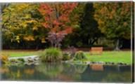 Autumn Color in Hagley Park, Christchurch, Canterbury, New Zealand Fine-Art Print
