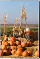 Pumpkin, hay bales, scarecrows, Fruitland, Idaho Fine-Art Print