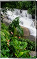 Rainforest waterfall, Serra da Bocaina NP, Parati, Brazil (vertical) Fine-Art Print
