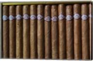 Cuba, Pinar del Rio Province, Cuban Cigars Art Print image Fine-Art Print