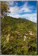 Dominica, Roseau, Grand Bay Area, Petite Savanne Fine-Art Print