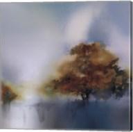 Old Oaks & Sea Mist Fine-Art Print