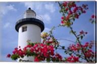 Puerto Rico, Viegues Island, lighthouse of Rincon Fine-Art Print