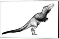 Black Ink Drawing of Daspletosaurus Torosus Fine-Art Print