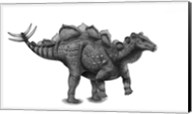 Pencil Drawing of Wuerhosaurus Homheni Standing on its Hind Legs Fine-Art Print