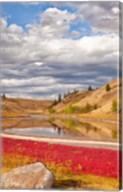 Grassland landscape, Lac Du Bois Grasslands Park, Kamloops, BC, Canada Fine-Art Print
