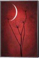 Red Crescent Moon Fine-Art Print