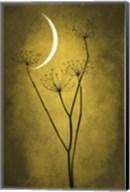 Yellow Crescent Moon Fine-Art Print
