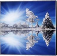 Cold Light Fine-Art Print