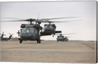 UH-60 Black Hawks taxis out for a mission over northern Iraq Fine-Art Print