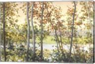 Autumn Shady Fine-Art Print