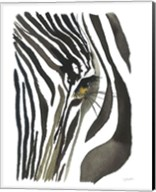 Zebra Eye Fine-Art Print
