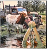 Steer and Old Truck in Terrebonne Fine-Art Print