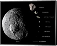 Digital Composite Showing the Comparative Sizes of Nine Asteroids Fine-Art Print