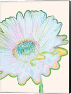 Pop Daisy Fine-Art Print
