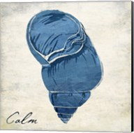 Inspirational Blue Shell I Fine-Art Print